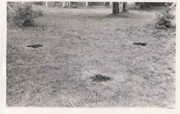 De tre spåren i marken